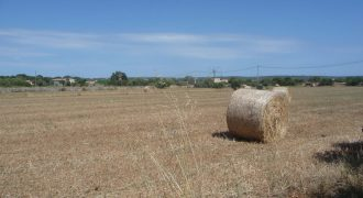 Large rustic plot of 17,221 m2 between Colonia Sant Jordi and Ses Salines