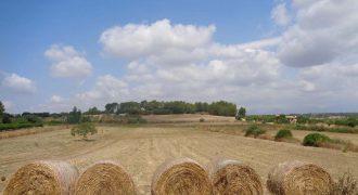 Terreno rústico en Algaida