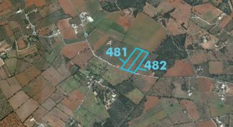 Rustic land plot 14.677m2 en quiet area near Ses Salines