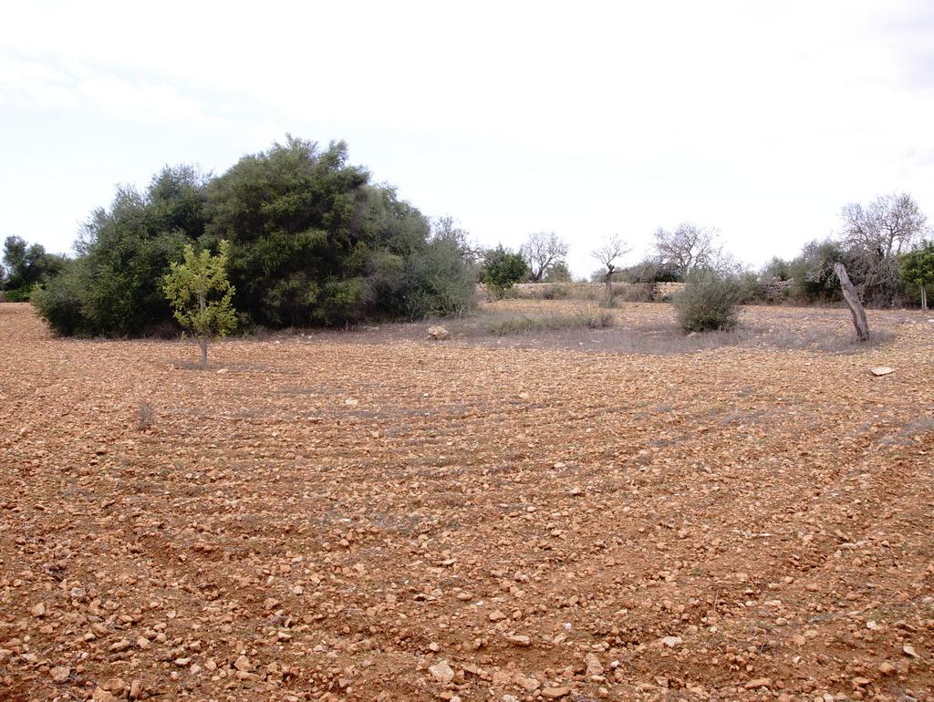 Terreno r stico con vistas a cabrera casas en venta ses for Legalizar casa en terreno rustico