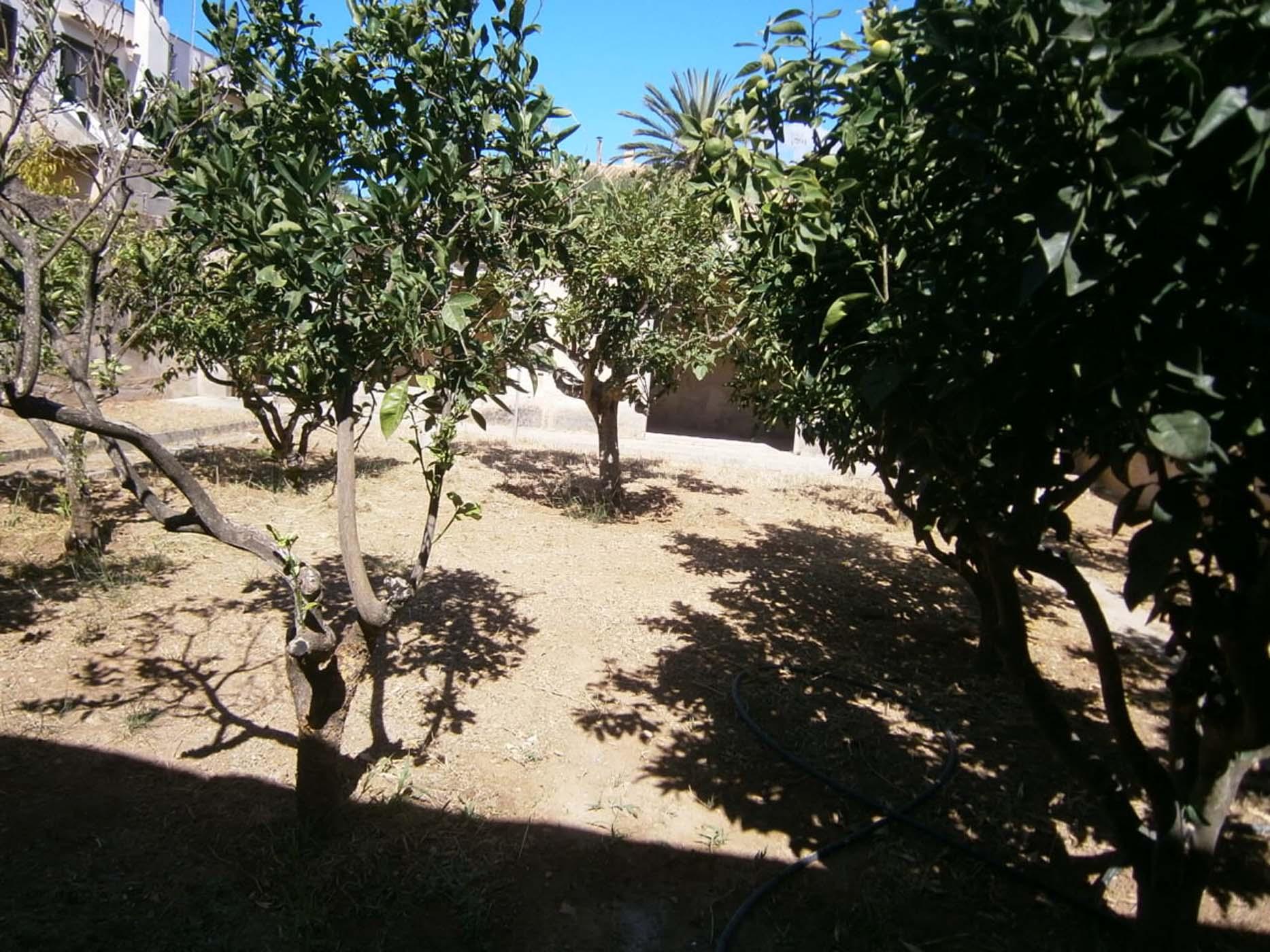 Casa de pueblo con jard n inmobiliaria sud mallorca for Inmobiliaria jardines