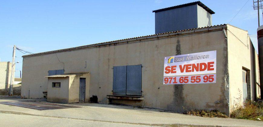 Industriehalle in Ses Salines