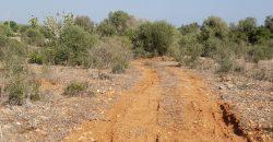 Terreno rústico en zona tranquila a 2km de Ses Salines