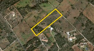 Buildable rural property in a quiet location but close to the village and beaches