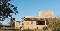 Finca en Ses Covetes en parcela de 22.500 m2 y vivienda de 180 m2.