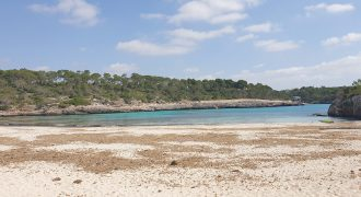 Plot with project of house and pool in Cala Mondragó.