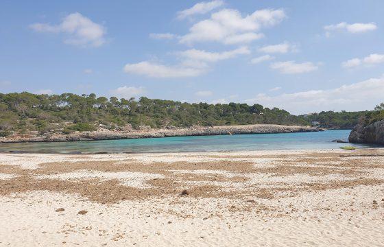 Grundstück mit Bauprojekt von Haus und Pool in Cala Mondragó.